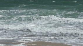 在岸的大绿色波浪 股票录像