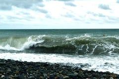 在岸的完善的海波浪 免版税图库摄影