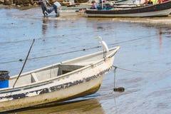 在岸的小船在El Rompio巴拿马 免版税库存照片