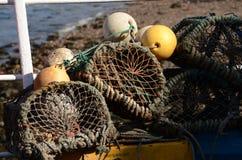在岸的捕蟹篓 免版税图库摄影