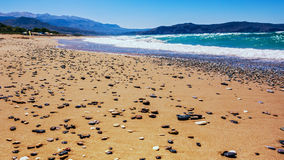 在岸的海石头 免版税图库摄影