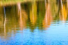 在岸的水秋天森林里环境美化,反射 免版税库存图片