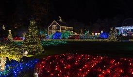 在岸英亩的圣诞灯 库存照片