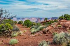 在峡谷前面的沙漠刷子在天空的海岛 库存图片