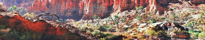 在峡谷的峭壁 库存图片