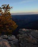 在峡谷的日出 库存照片