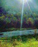 在峡谷的早晨,乌克兰 免版税库存图片