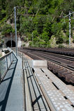 在峡谷的铁路桥 免版税库存照片