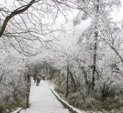 在峨眉山,瓷的雪场面 免版税库存照片