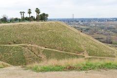 在峭壁上面的一点绿洲 免版税库存图片