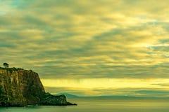 在峭壁和海的单粒宝石树 免版税库存照片
