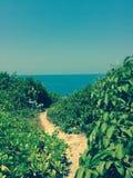 在峭壁的蓝色海视图 暑假,热带 图库摄影