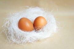 在巢下的两个鸡蛋 免版税图库摄影