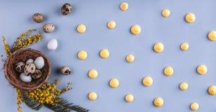 在巢和春天花的复活节彩蛋在蓝色假日背景 r   库存图片
