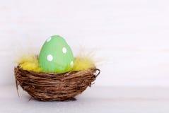 在巢的一个绿色复活节彩蛋与拷贝空间 图库摄影