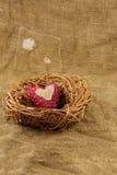 在巢的一手工制造心脏 免版税库存照片