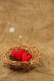 在巢的两手工制造心脏 免版税库存照片