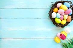 在巢的五颜六色的复活节彩蛋与郁金香在蓝色木背景开花 库存图片