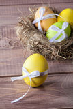 在巢的五颜六色的复活节彩蛋 免版税库存图片
