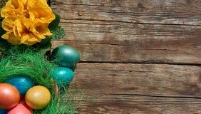 在巢的复活节彩蛋在老木背景 免版税库存照片