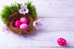 在巢的复活节彩蛋在草 免版税库存照片