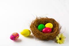 在巢的多彩多姿的复活节彩蛋 免版税库存图片