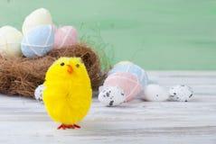 在巢的小鸡和复活节彩蛋 免版税图库摄影