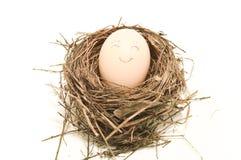 在巢的微笑鸡蛋 库存图片