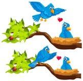 在巢的蓝色鸟 库存例证