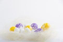 在巢的被绘的复活节彩蛋 免版税库存照片