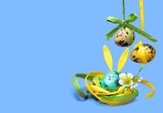 在巢的逗人喜爱的兔宝宝鸡蛋滑稽的复活节卡片的 图库摄影