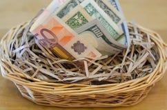 在巢的金钱 免版税图库摄影