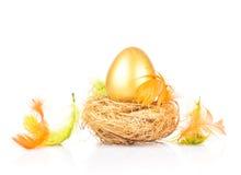 在巢的金黄鸡蛋 库存照片