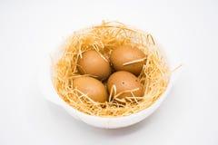 在巢的鸡蛋与白色背景射击在演播室 库存照片