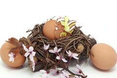 在巢的鸡蛋与陶瓷母鸡和开花 免版税库存照片