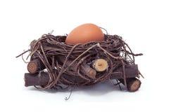 在巢的鸡蛋 库存照片