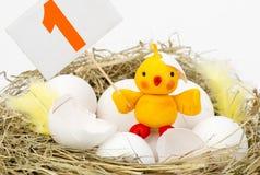 在巢的鸡 免版税库存照片