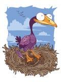 在巢的鸬鹚 免版税库存图片