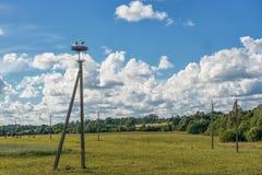 在巢的鹳在输电线 蓝色多云天空 免版税库存照片
