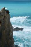 在巢的鹳夫妇在海洋峭壁 免版税图库摄影