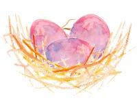 在巢的水彩鸡蛋 库存照片