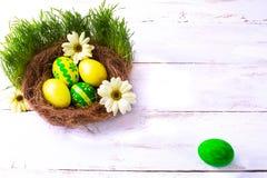 在巢的黄色和绿色复活节彩蛋 免版税库存照片