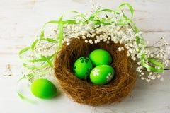 在巢的绿色复活节彩蛋 免版税库存图片