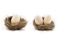 在巢里面的鸡蛋 库存照片