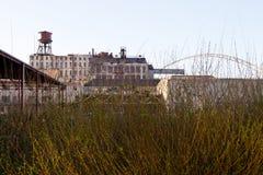 在工业区前面的灌木 库存图片