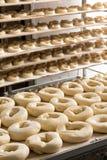 在工业百吉卷工厂准备的面团 免版税库存图片