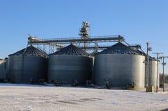 在工厂农场的农业筒仓 免版税库存图片