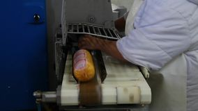 在工厂的煮沸的香肠 股票视频