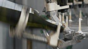 在工厂自动传送带洗涤的绿色瓶的关闭 香宾或葡萄酒酿造 股票视频