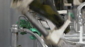 在工厂自动传送带洗涤的绿色瓶的关闭 香宾或葡萄酒酿造 股票录像